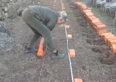 03edenwood - orto permacultura